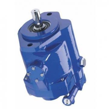 Vickers PVQ40AR02AA10D0100000100 100CD0A PVQ pompe à piston
