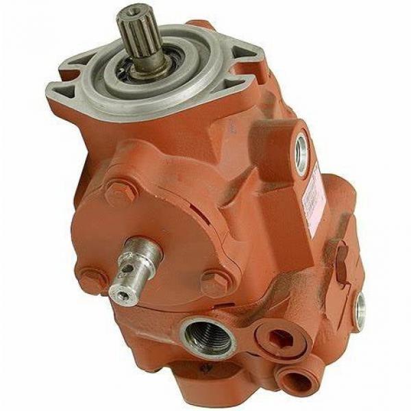 Vickers PVB45A-RSF-20-CA-11  pompe à piston #3 image