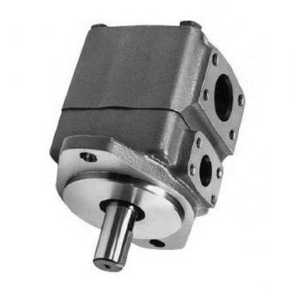 Vickers PVH074L02AA10B2520000010 01AE010A PVH pompe à piston #3 image