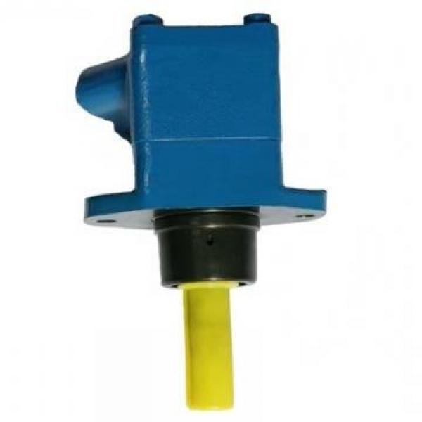 Vickers PVH074R01AA10D2500140010 01AA01 PVH pompe à piston #1 image