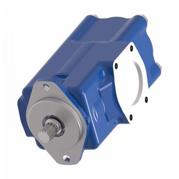 Vickers PVH074L02AA10B2520000010 01AE010A PVH pompe à piston #1 image