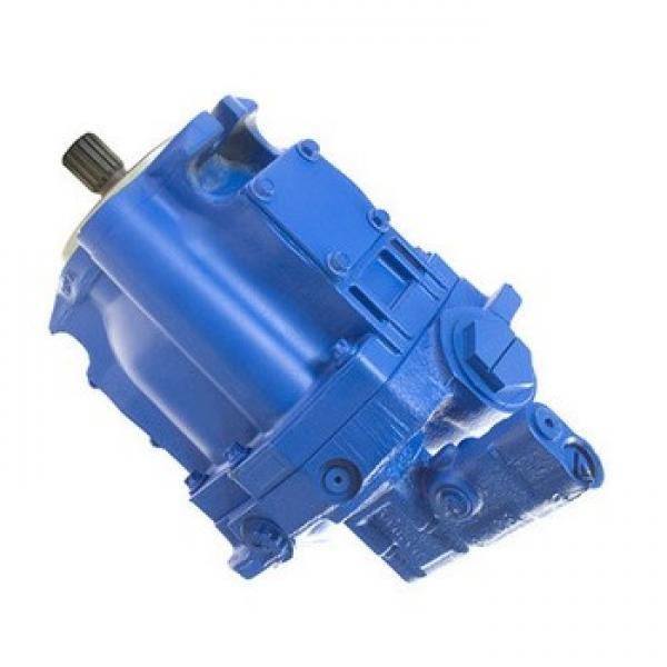 Vickers PVQ45AR05AA10B181100A100 100CD0A PVQ pompe à piston #1 image