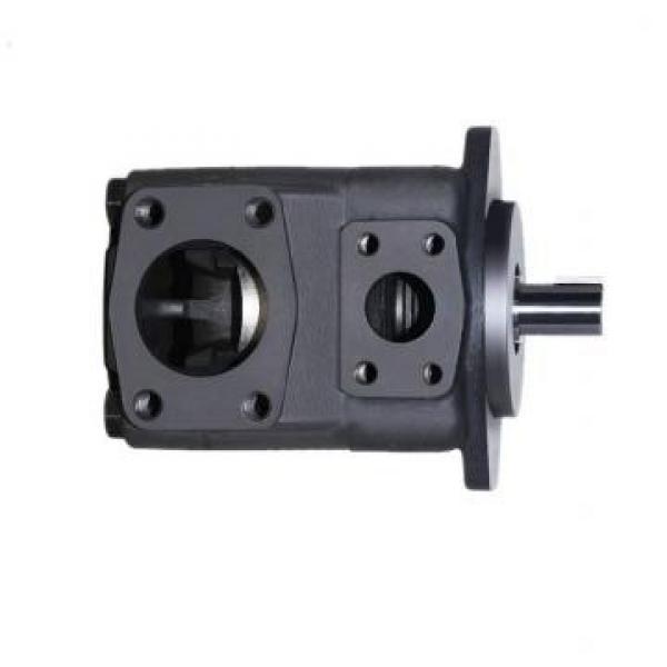 Vickers PVQ40AR01AB10B2111000100 100CD0A PVQ pompe à piston #3 image