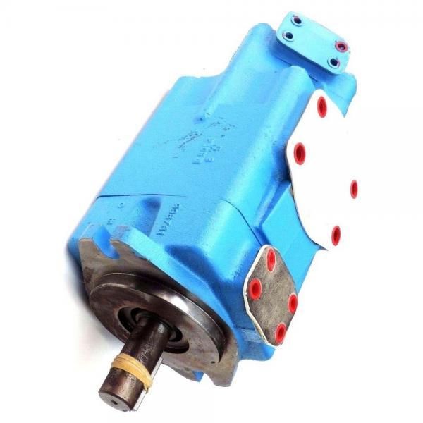 Vickers 45V60A-1B22L pompe à palettes #2 image