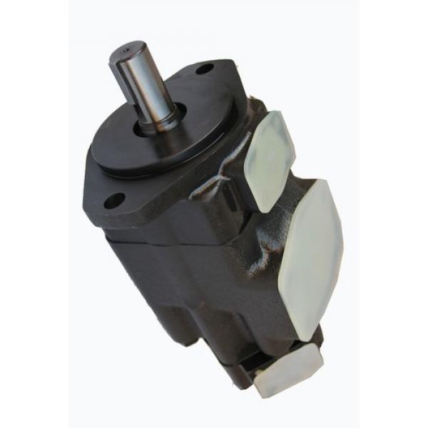 Vickers 45V60A 1A22R pompe à palettes #2 image