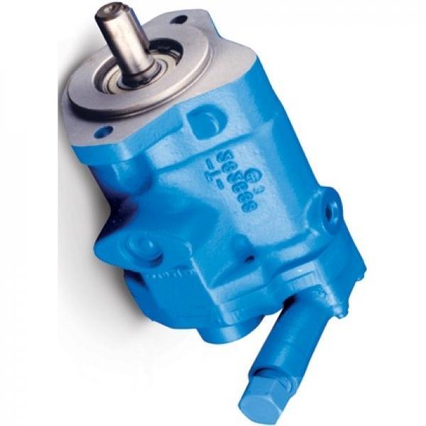 Vickers PVQ40AR01AA10D0100000100 100CD0A PVQ pompe à piston #1 image
