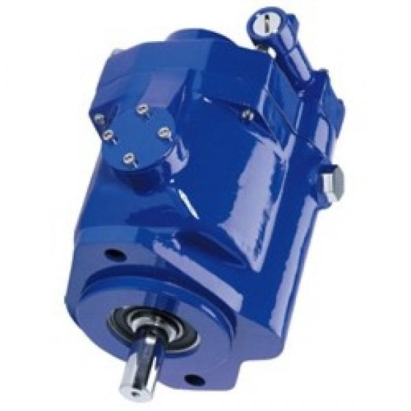 Vickers PVQ45AR01AA10B191100A100 100CD0A PVQ pompe à piston #1 image