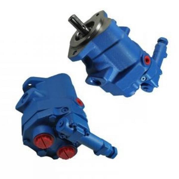 Vickers PVQ45AR01AB10E1824000100 100CD0A PVQ pompe à piston #3 image