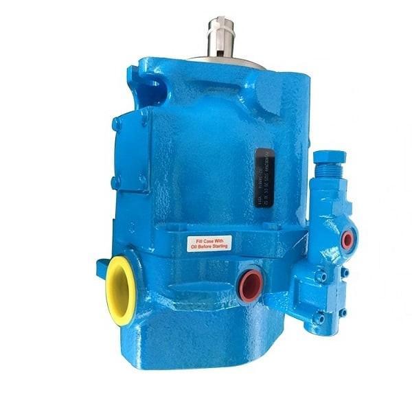 Vickers PVQ45AR05AB10A0700000100 100CD0A PVQ pompe à piston #1 image